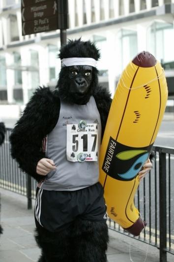The-Great-Gorilla-Run1