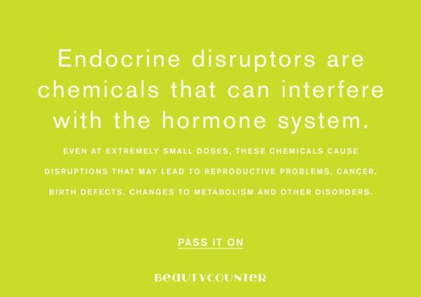 endocrine disruptors in the environment Theo colborn (1927-2014), was the founder of tedx and is widely regarded as one of the founders of the field of endocrine disruption a biography by elisabeth grossman describes her life and work following her death, an announcement in environmental health perspectives was published, co-authored by niehs director dr linda birnbaum.